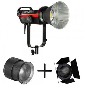 Cinematic Studio Lighting Kit - Aputure 300d II, Fresnel 2x, Barndoors India Tiyana